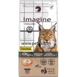 Imagine cat sterilized, imagine gato esterilizado