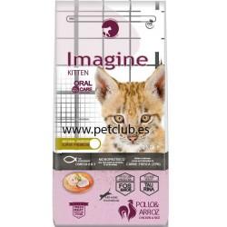 imagine cat kitten