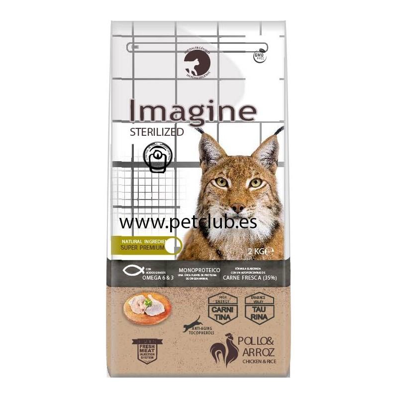 Imagine cat Sterlized, imagine gato esterilizado